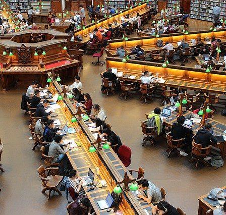 bibliothèque universitaire