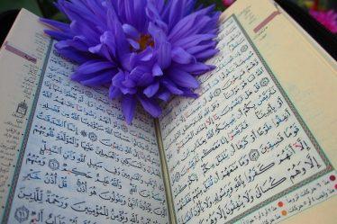 livre arabe